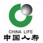 中国人寿股份有限公司藤县支公司1